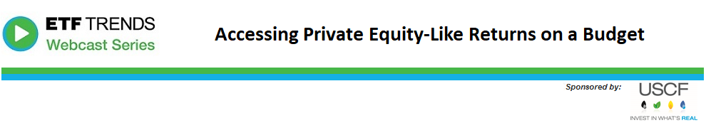 Accessing Private Equity-Like Returns on a Budget